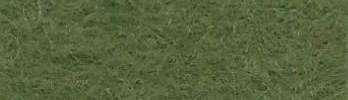 146 grün