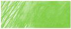 167 permanentgrün oliv
