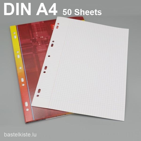 """Prüfungsblätter """"Fachdenblieder"""" kariert 5x5 DIN A4 mit Rand + Löcher"""
