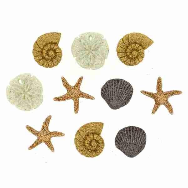 Seashells wollzauber.com