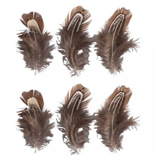 Federn 5-10cm, 6 Stück, rehbraun
