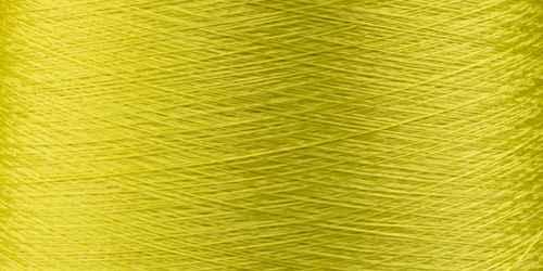 1231 Lemon