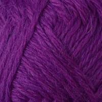 23 Violet