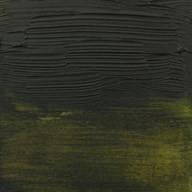 620 Olivgrün