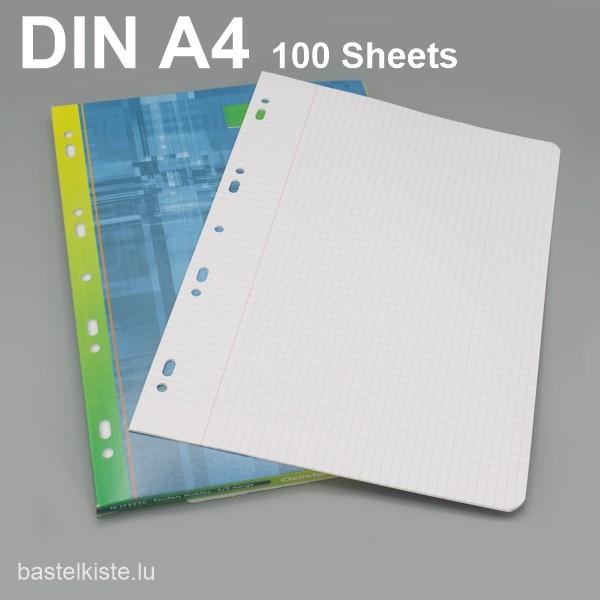 Lose Blätter kariert 5x5 DIN A4 mit Lochung + Rand