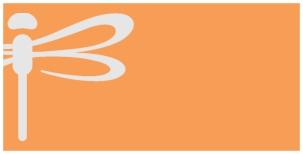 933 Orange