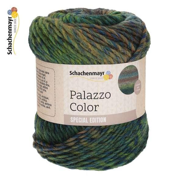 Schachenmayr Palazzo Color 9807885 wollzauber