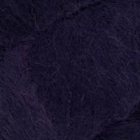 06 Elderberry