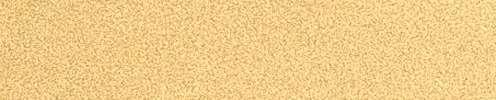 94 broncegold