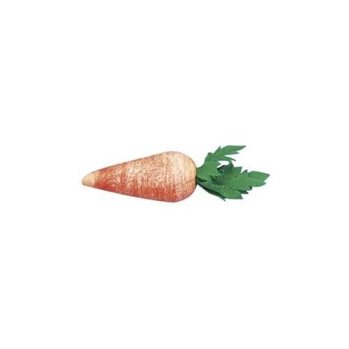 Kleine Karotten aus Watte in verschiedenen Größen
